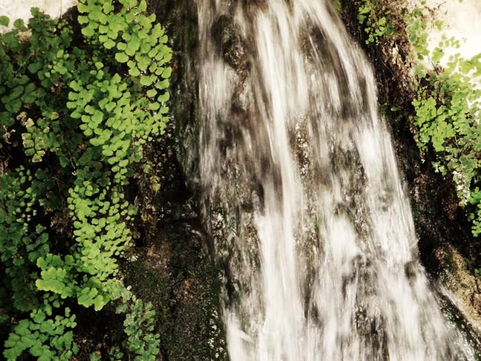 http://la.galerie.de.bildibrun.cowblog.fr/images/Photographies/SerpeHiertemps.jpg